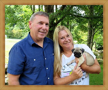 Phoebe/George's Callie/YoYo with new mom and dad - Fawn Pug Puppies | Did you ever walk into a room and forget why you walked in? I think that is how dogs spend their lives.