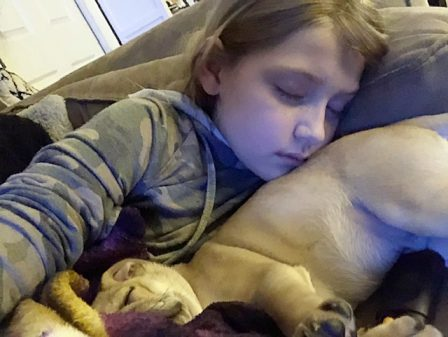 Pure pug love! - Apricot Pug Puppies   Petting, scratching, and cuddling a dog could be as soothing to the mind and heart as deep meditation and almost as good for the soul as prayer.