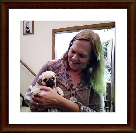Cinder's Craig/Gus meets his new mom, Jane. - Fawn Pug Puppies | Dogs love their friends and bite their enemies, quite unlike people, who are incapable of pure love and always mix love and hate.