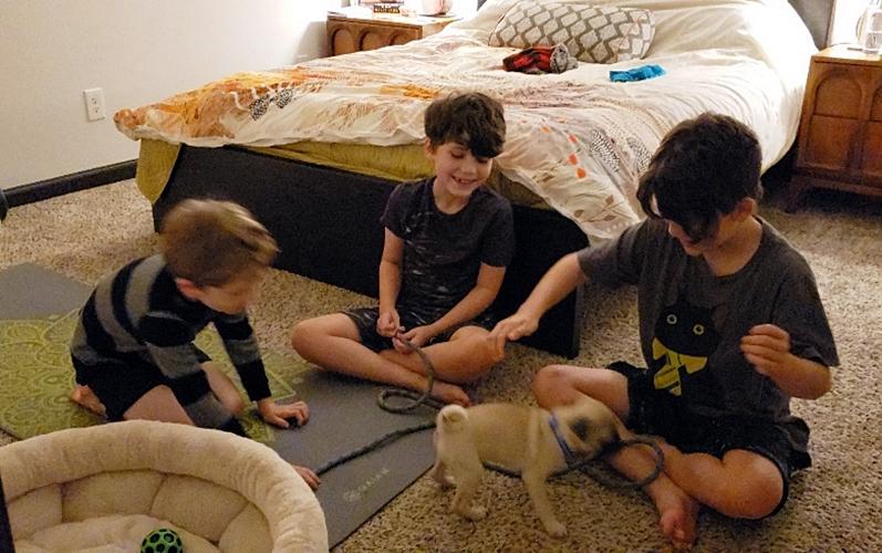 Dalton/Mylo entertaining his boys