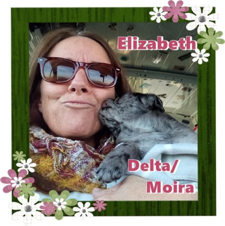 Cinder's Delta/Moira loves her new mom! - Merle Pug Puppies | The more people I meet, the more I love my dog.