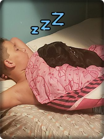 Our boys taking a nap! - Black Pug Puppies | The one absolutely unselfish friend that man can have in this selfish world, the one that never deserts him, the one that never proves ungrateful or treacherous, is his dog.