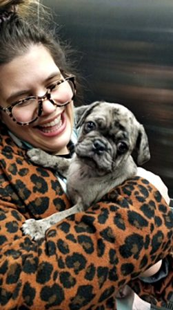 I think my new mom Evette really loves me! - Merle Pug Puppies | He is your friend, your partner, your defender, you are his life, his love, his leader.