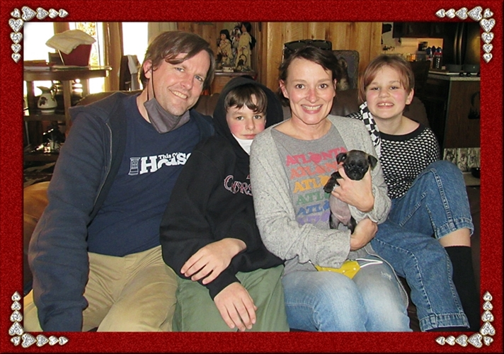 Jackie/Olive, a rare chocolate pug, with her new family