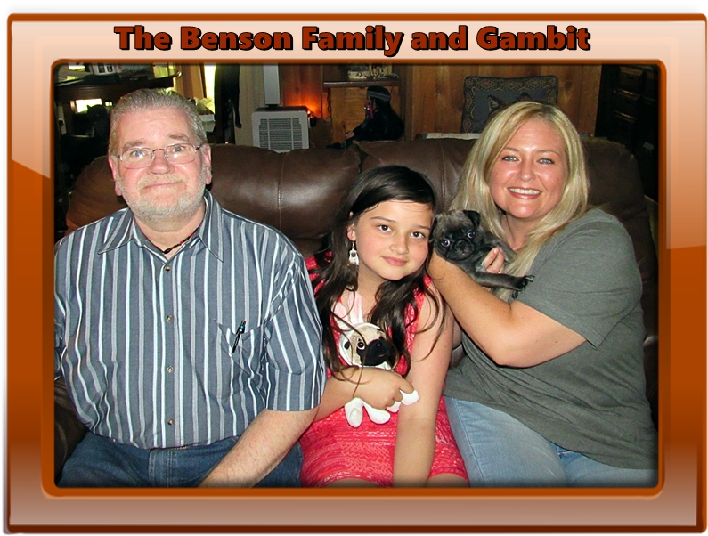 Bella's Beautiful Jacob/Gambit with The Benson Family