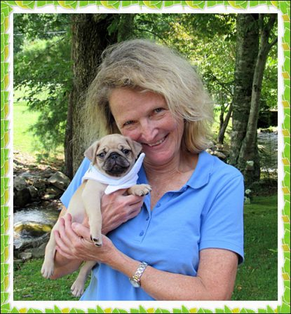 Korbin/Pepin is the little man in Dawn's life - Fawn Pug Puppies | A dog is one of the remaining reasons why some people can be persuaded to go for a walk.