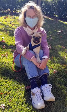 Dixie's & Aiken's Korbin aka Pepin - Apricot Pug Puppies | Outside of a dog, a book is man's best friend - inside of a dog it's too dark to read.