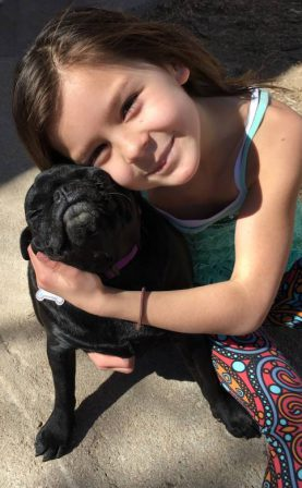 Love you. Love you back. - Adult Black Pug | Petting, scratching, and cuddling a dog could be as soothing to the mind and heart as deep meditation and almost as good for the soul as prayer.