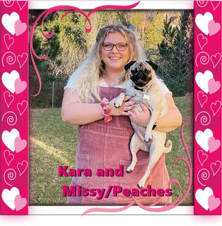 Missy/Peaches is two years old! - Adult Fawn Pug | Dogs love their friends and bite their enemies, quite unlike people, who are incapable of pure love and always mix love and hate.