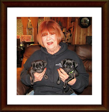 Christine with her two new babies Greta and Zoe - Black Pug Puppies | There is no psychiatrist in the world like a puppy licking your face.