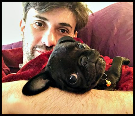 Daddy's little girl Poppy/Liza Minnelli - Black Pug Puppies | Every boy who has a dog should also have a mother, so the dog can be fed regularly.