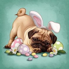 Happy 2020 Easter - Fawn Pug Puppies | The dog is a gentleman; I hope to go to his heaven not man's.