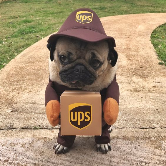 I have a delivery for you sir
