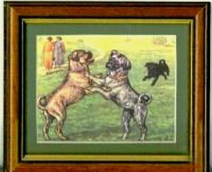 Painting of a brindle pug from the 1800's