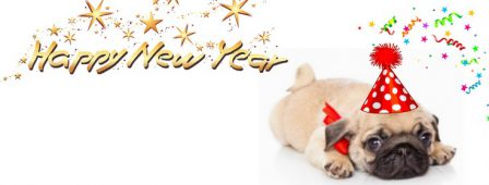 Happy New Year 2018! - Fawn Pug Puppies | A dog will teach you unconditional love, if you can have that in your life, things won't be too bad.