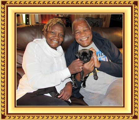 Cocoa's Sam/Maximus with his new family Ethelind and Howard - Silver Pug Puppies | Dogs love their friends and bite their enemies, quite unlike people, who are incapable of pure love and always mix love and hate.