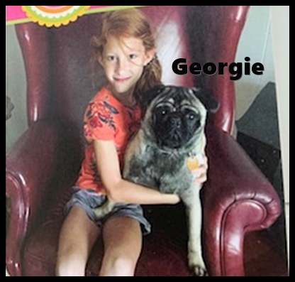 Ebony's Snickers aka Georgie with his birthday girl. - Adult Fawn Pug | A dog will teach you unconditional love, if you can have that in your life, things won't be too bad.