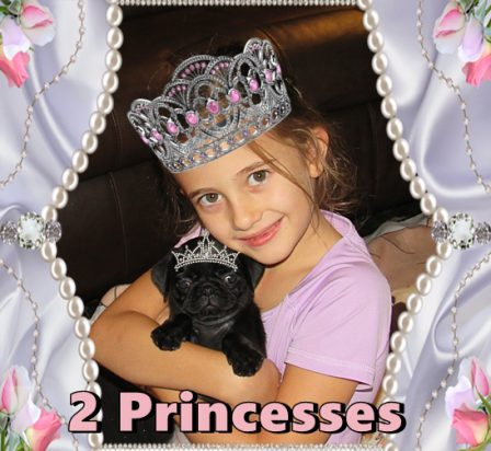 Two pretty princesses - Black Pug Puppies | My goal in life is to be as good of a person my dog already thinks I am.